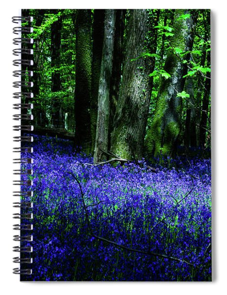 Bluebell Wood Devon Spiral Notebook