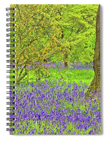 Bluebells And Blossom In Spring Spiral Notebook