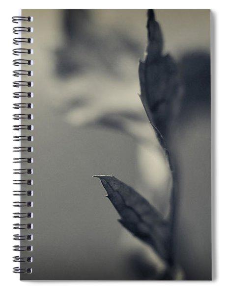 Blurred Lines Spiral Notebook