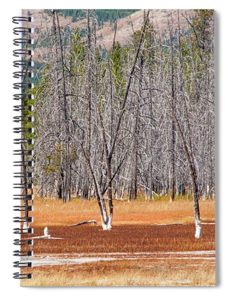 Bobby Socks Trees Spiral Notebook