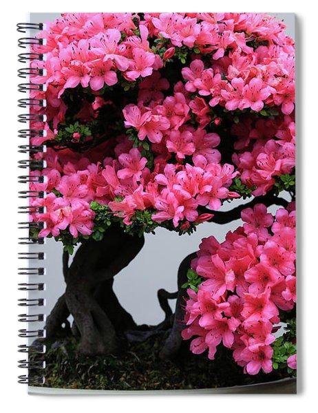 Bonsai Azalea Bright Pink Spiral Notebook