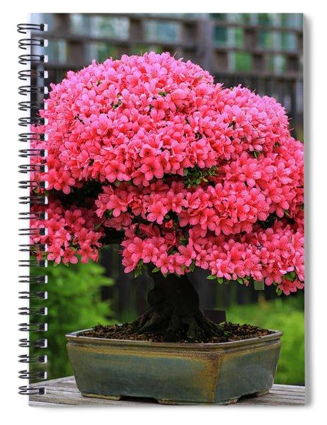 Bonsai Pink Azalea View Spiral Notebook