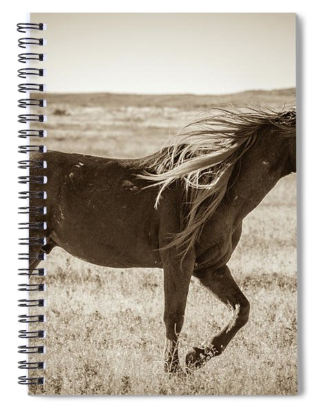 Born To Be Wild Spiral Notebook