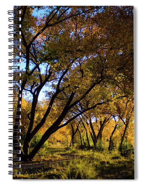 Bosque Color Spiral Notebook