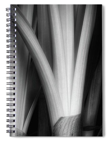Botanical Abstract Spiral Notebook