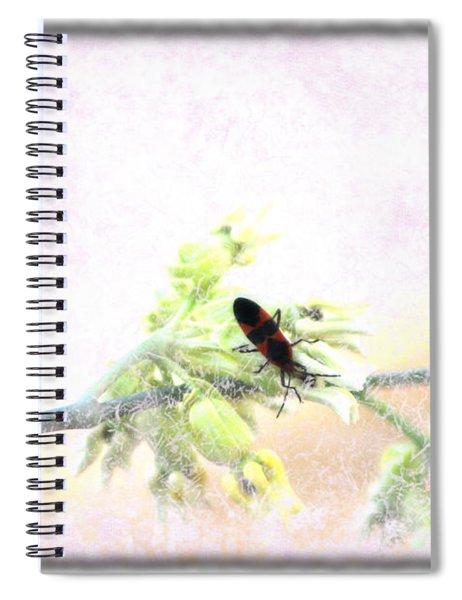 Boxelder Bug In Morning Haze Spiral Notebook