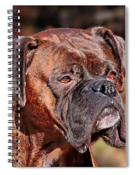 Boxer Spiral Notebook
