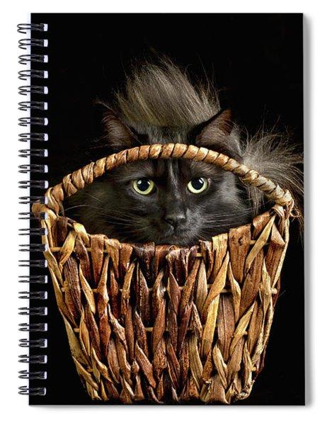 Boyfriend In A Basket Spiral Notebook