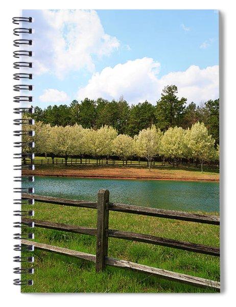 Bradford Pear Trees Blooming Spiral Notebook