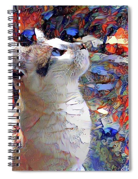 Brady The Half Siamese Half Tabby Cat Spiral Notebook