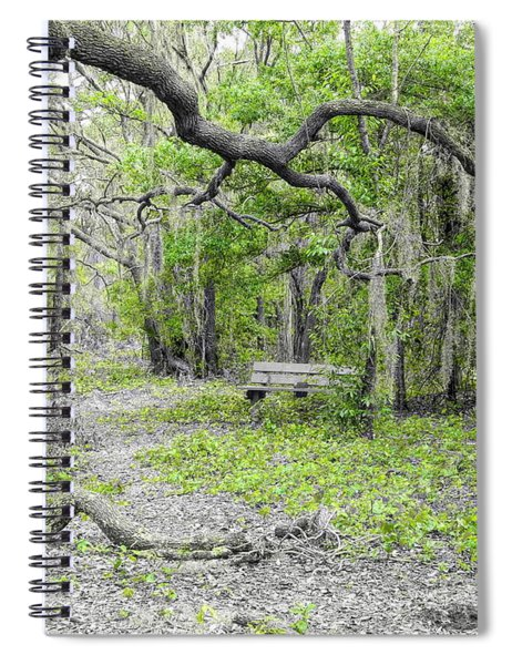 Branching Out Spiral Notebook