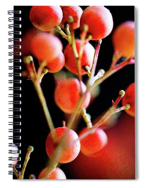 Brazilian Pepper 0423 Spiral Notebook