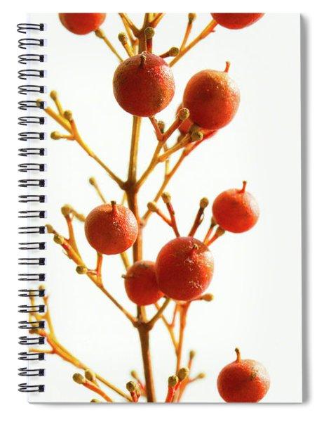 Brazilian Pepper 0482 Spiral Notebook