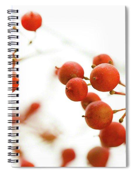 Brazilian Pepper 0493 Spiral Notebook