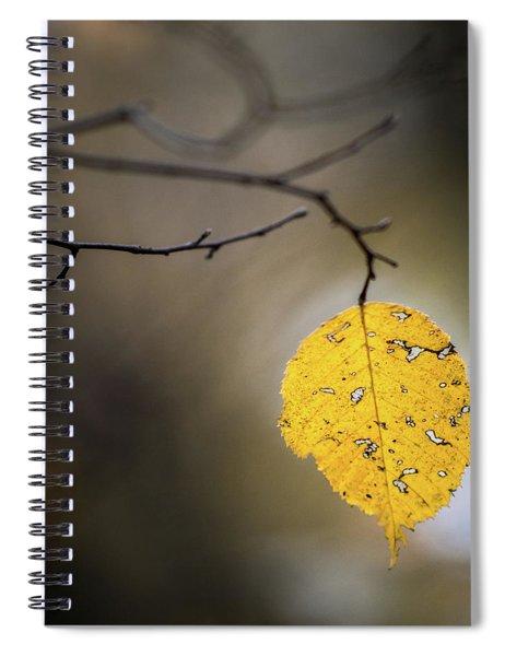 Bright Fall Leaf 7 Spiral Notebook