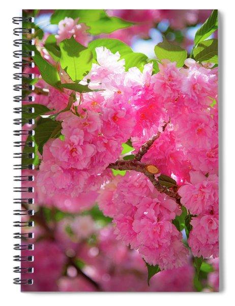 Bright Pink Blossoms Spiral Notebook