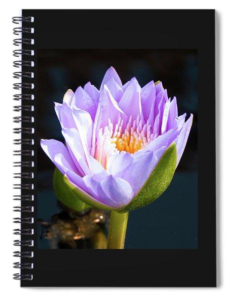 Brillance In Purple Spiral Notebook