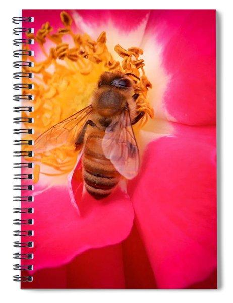 Brilliant Bee Spiral Notebook