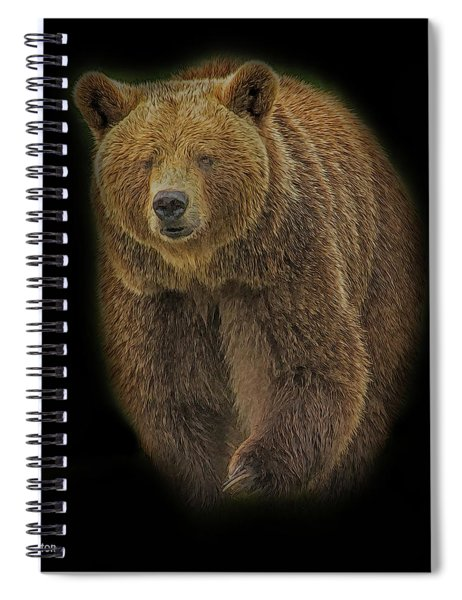 Brown Bear In Darkness Spiral Notebook