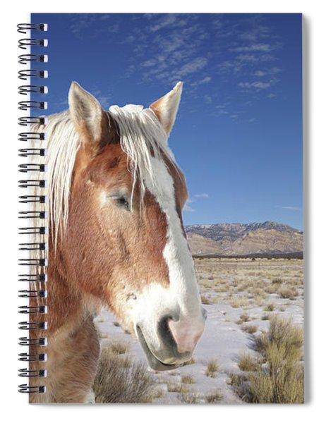 Brown Horse  Spiral Notebook