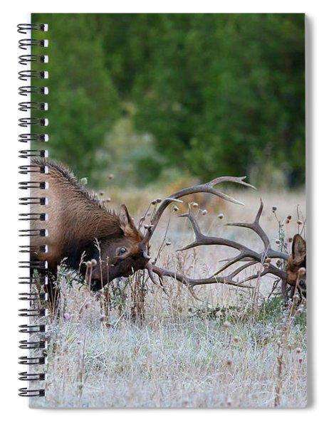 Bull Elk Battle Rocky Mountain National Park Spiral Notebook