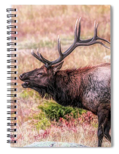 Bull Elk Bugle Spiral Notebook