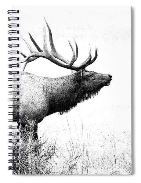 Bull Elk In Rut Spiral Notebook