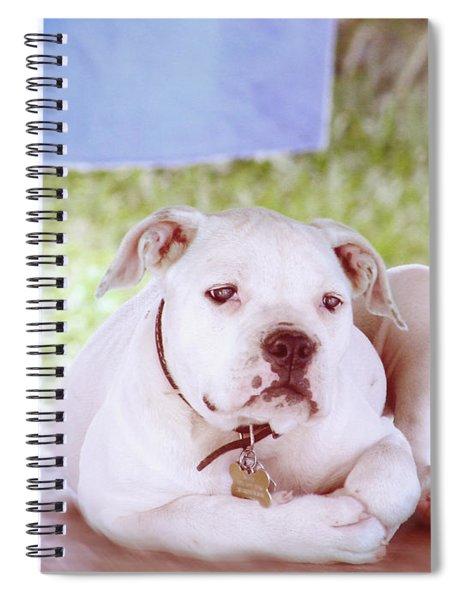 Bulldog Rana Art 80 Spiral Notebook