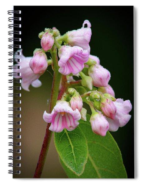 Bunch Of Dogbane Spiral Notebook