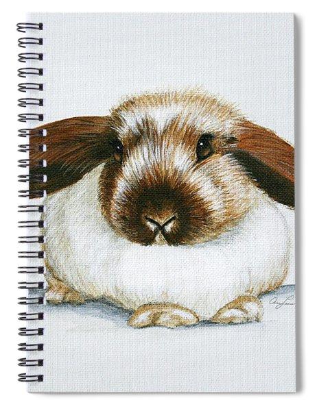 Bunny 3 Spiral Notebook