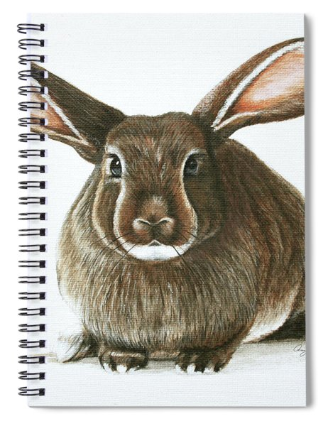 Bunny 4 Spiral Notebook