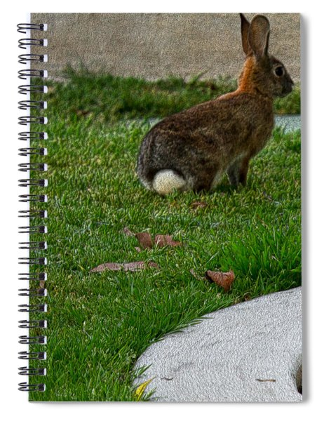 Bunny In Park Spiral Notebook
