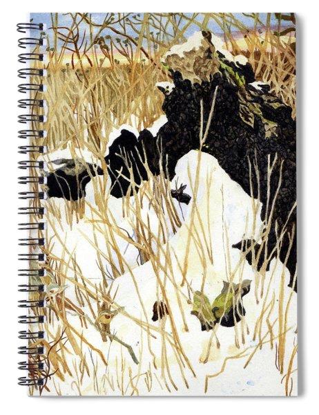 Bur Oak In The Winter Spiral Notebook