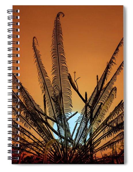 Burmese Fern At Sunset Spiral Notebook