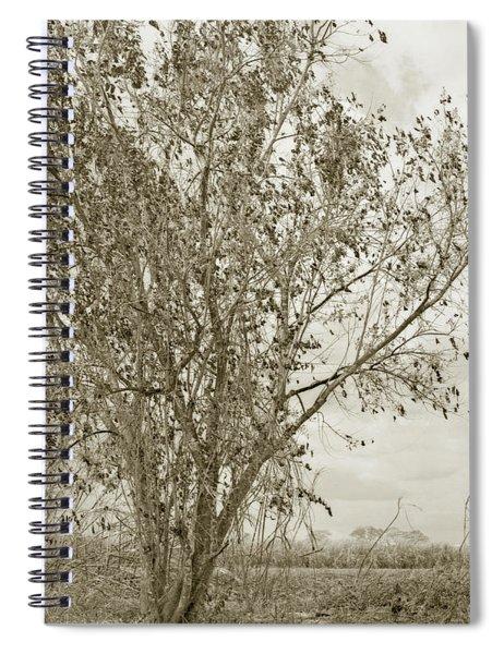 Burned Spiral Notebook