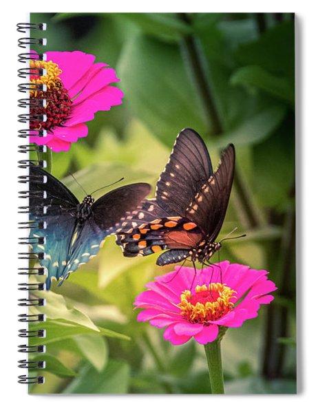 Butterflies Spiral Notebook by Allin Sorenson