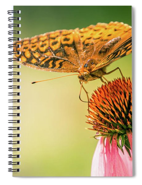 Butterfly And Flower Spiral Notebook by Allin Sorenson