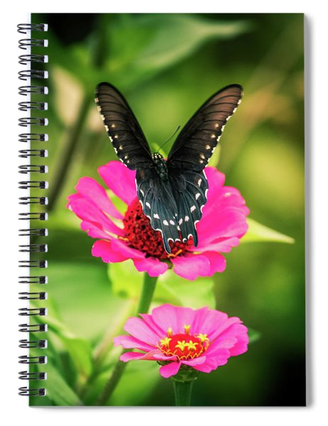 Butterfly And Flowers Spiral Notebook by Allin Sorenson