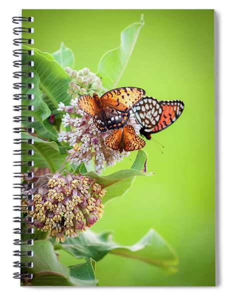 Butterfly Buffet II Spiral Notebook