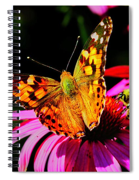 Butterfly Wings Open Spiral Notebook
