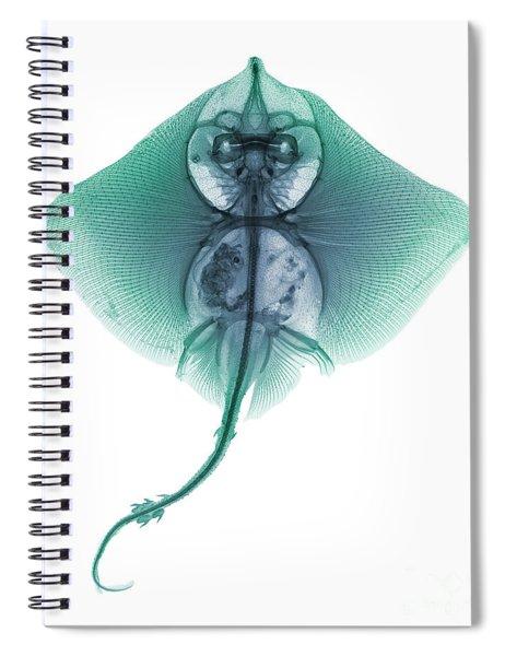 C022/5902 Spiral Notebook