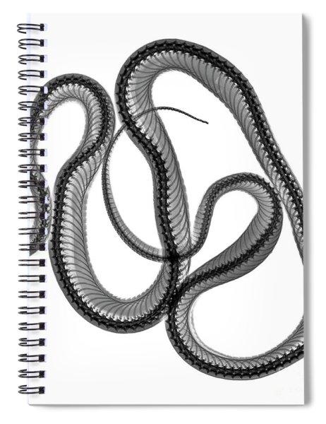 C025/8521 Spiral Notebook