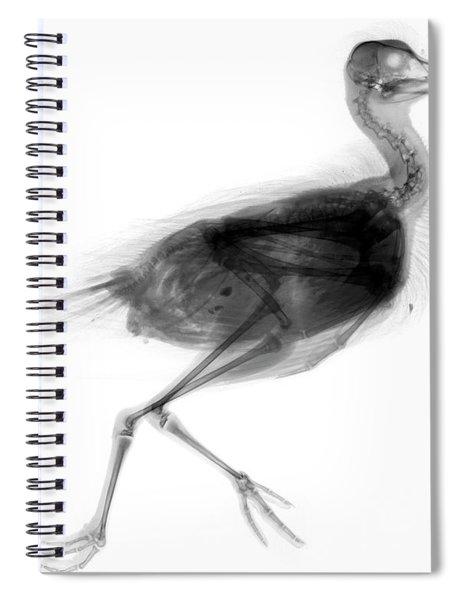 C026/7624 Spiral Notebook
