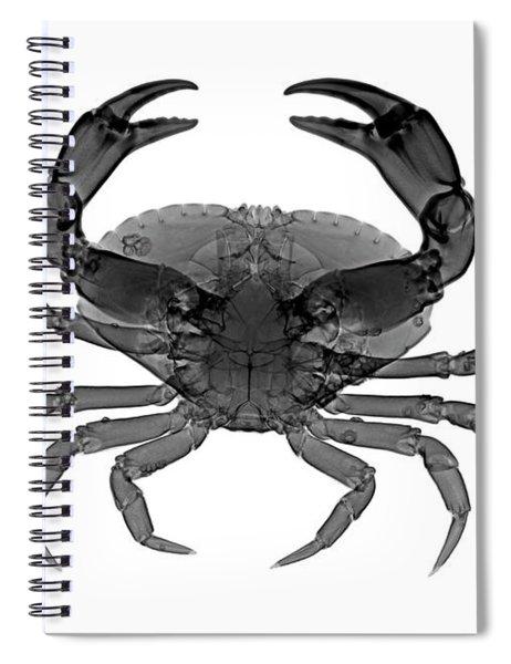 C033/7468 Spiral Notebook