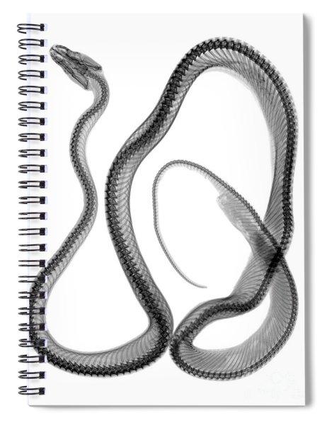 C033/7491 Spiral Notebook