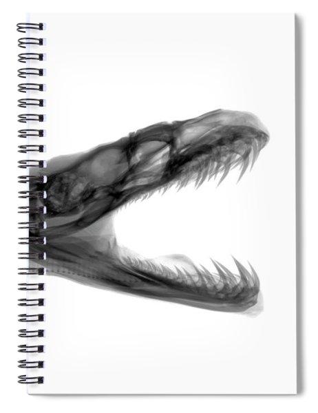 C033/7492 Spiral Notebook
