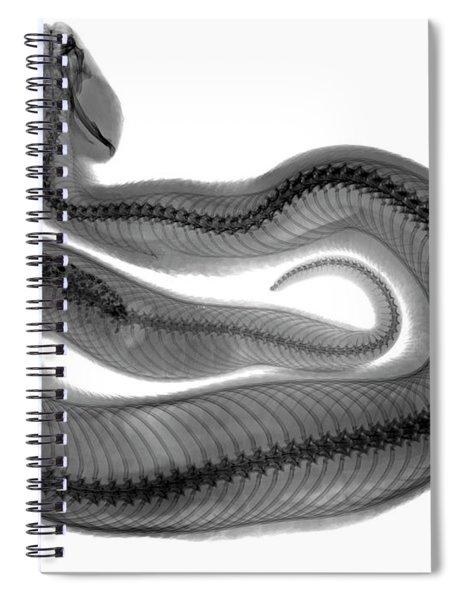 C035/4928 Spiral Notebook