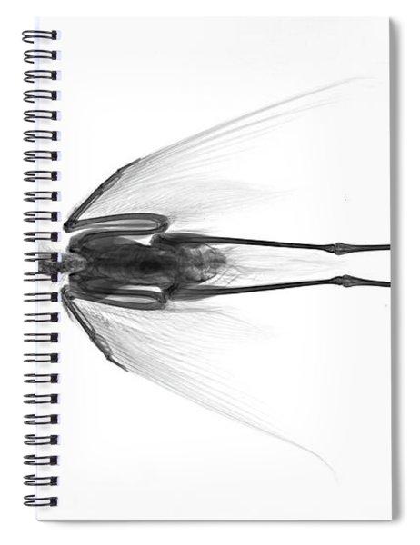 C035/4932 Spiral Notebook
