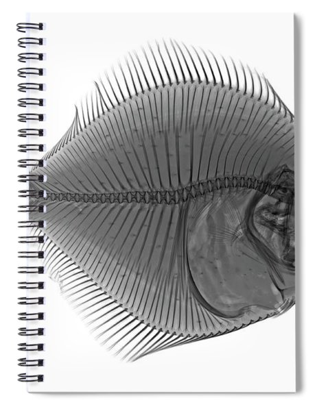 C036/0124 Spiral Notebook