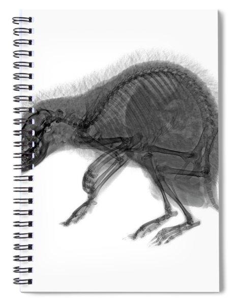 C037/9600 Spiral Notebook